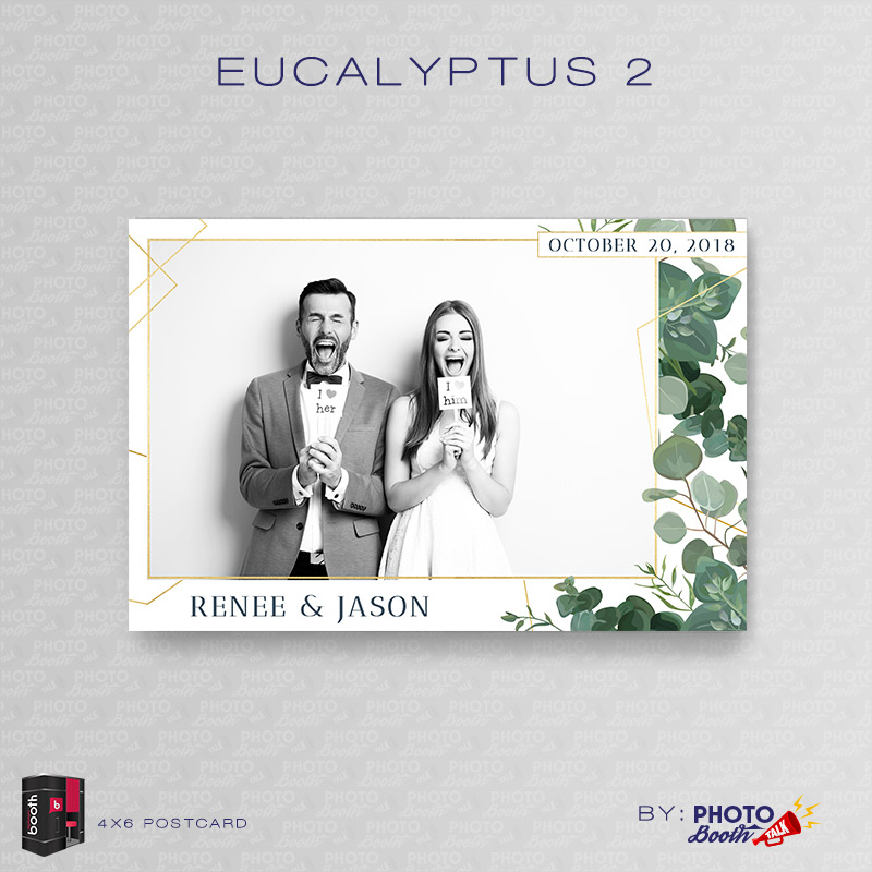 eucalyptus 2 for darkroom booth photo booth talk. Black Bedroom Furniture Sets. Home Design Ideas